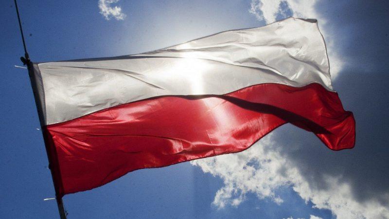 日本×ポーランド国交100周年を記念したイベントが盛りだくさん